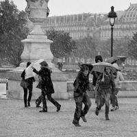 неожиданный дождь жанровое фото