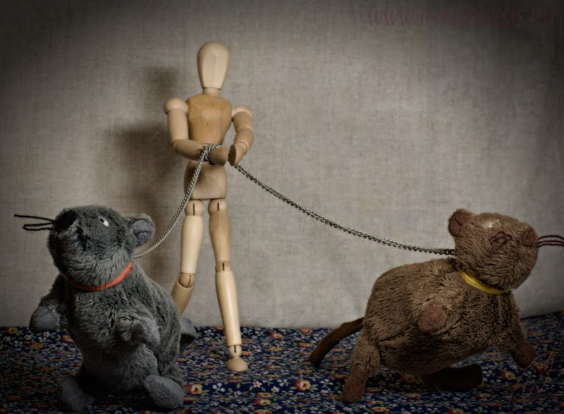 wooden manequin rat evening walk деревянный манекен девушка вечерняя прогулка крыса цепь chain