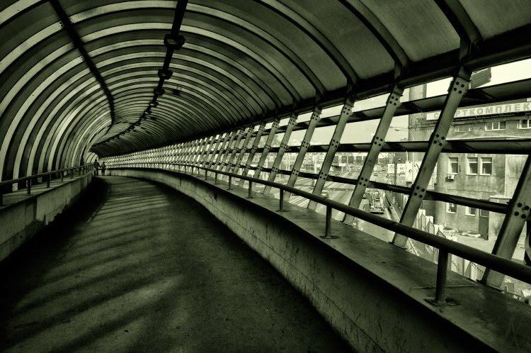 giant concrete and metal shell urban view городской сюжет гигантский железобетонный моллюск автор Демидов Игорь