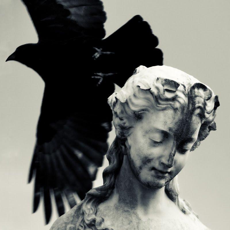 Black wings and white statue anxiety and humility Черные крылья белаястатуя тревожность и покорность автор Демидов Игорь