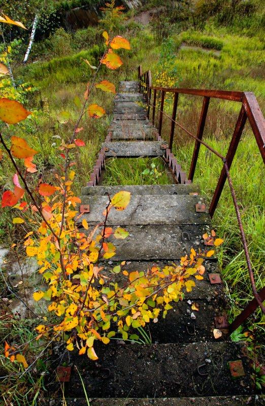 Ржавая лестница спускается вниз ступени сломаны трава внизу автор Демидов Игорь rusty stairs autumn leaves broken steps