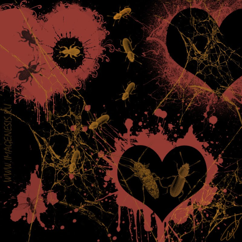 beetle heart hole web blood кровь сердце дырка жук брызги Демидов Игорь Igor Demidov