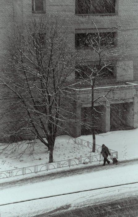 холодный мокрый снег в апреле идёт челловек с сумкой на колёсиках холодно промозгло сыро автор Демимидов Игорь wet snow falling on lonely old man with big bag