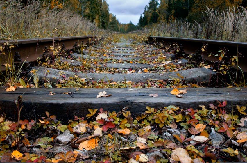 железная дорога осенью палая жёлтая и красна ялиства на шпалах автор Демидов Игорь railway at autumn fallen leaves yellow and red