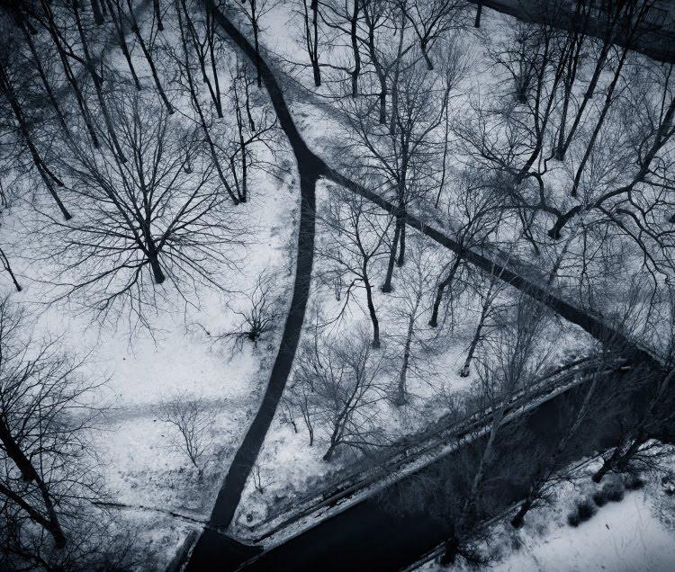 треугольник чёрных дорог белая зимняя земля деревья как плесень автор Демидов Игорь black triangle of roads trees like mould on cold winter ground