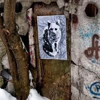 street art winter cat уличное искусство зимняя кошка