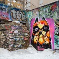 street art orange cat графити уличное искусство
