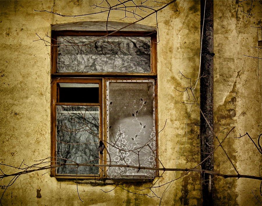 cold winter window flowers on curtain холдное окно зимой цветы на белом тюле автор Демидов Игорь