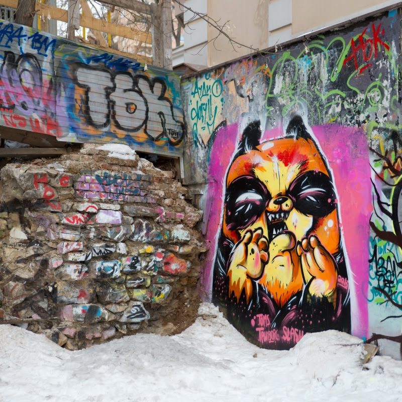 уличное искусство граффити оранжевый кот и стена автор фото Демидов Игорь orange ccat on the wall street art graffiti