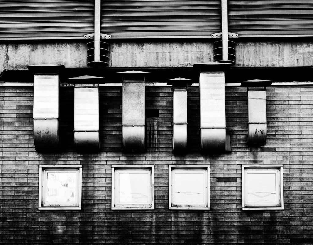 окна трубы опята windows pipe honey agarics автор Демидов Игорь