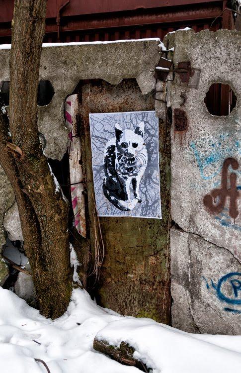 street art mural painting winter cat rusty wall уличное искусство ржавчина на стене зимняя кошка автор фото Демидов Игорь