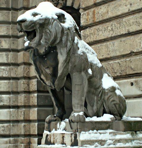 hungry lion in budapest statue статуя голодного рычащего льва в будапеште автор Демидов Игорь