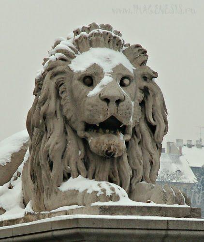 blind lion budapest statue статуя в Будапеште слепой лев автор Демидов Игорь