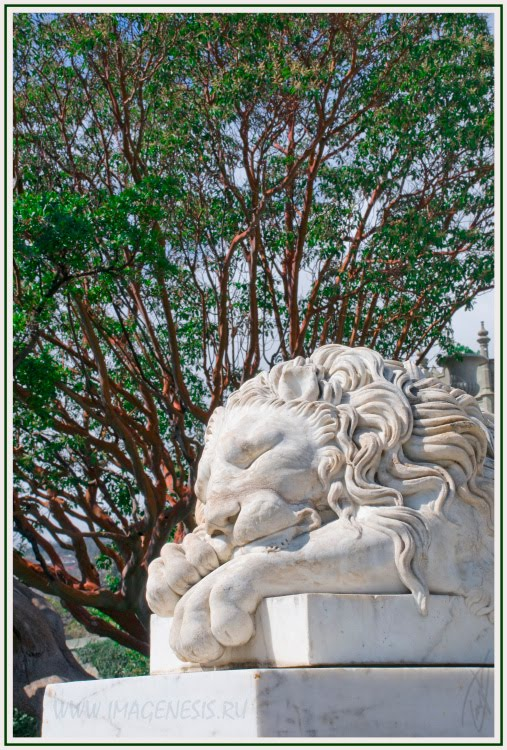 спящий лев sleeping lion статуя