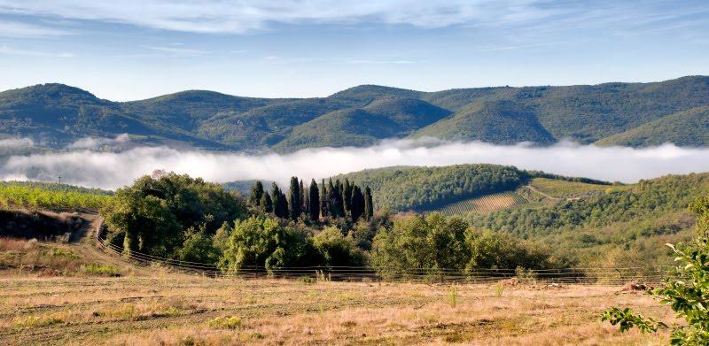 fog in the Chianti valley vineyards hills Italy Tuscany туман в долине между гор Кьянти в Тоскане вокруг виноградники автор Демидов Игорь