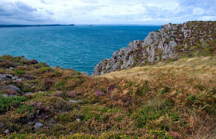 heath rocks sea grass Brittany скалы трава можжевельник и море берег Бретани автор Демидов Игорь