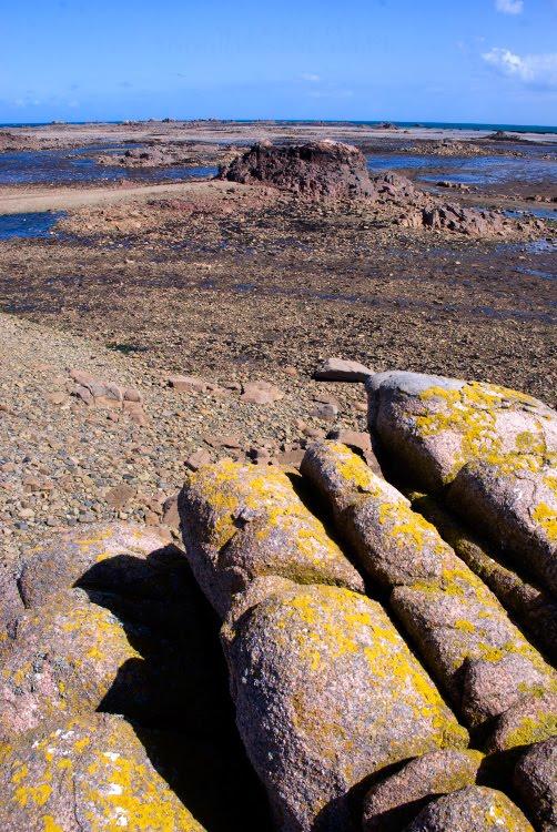 Brittany low tide sea bottom rocks камни на дне моря в Бретани отлив автор Демидов Игорь