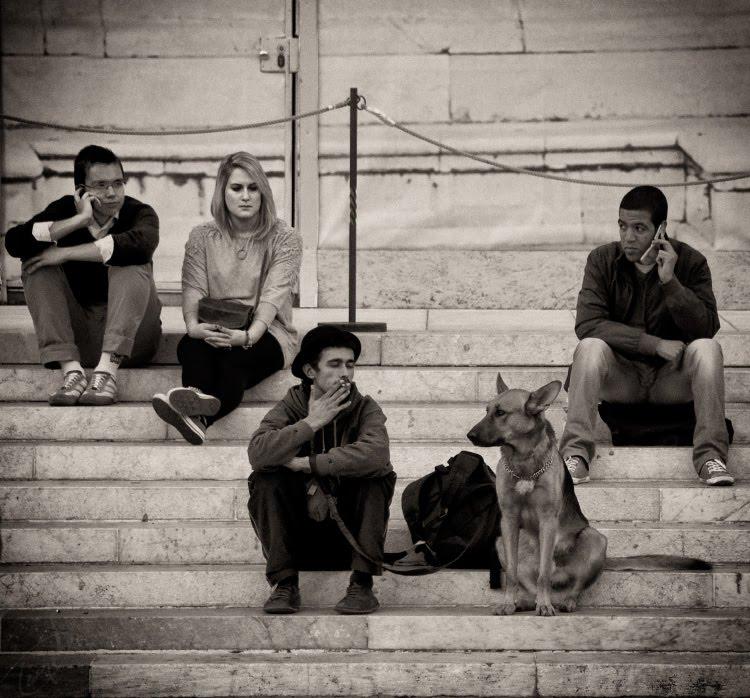 люди сидят на ступенях с мобильными телефонами собаками подругами каждый думает о своём. Италия Болонья 2011 автор Демидов Игорь people sitting on the stairs speaking mobilewalking  dog