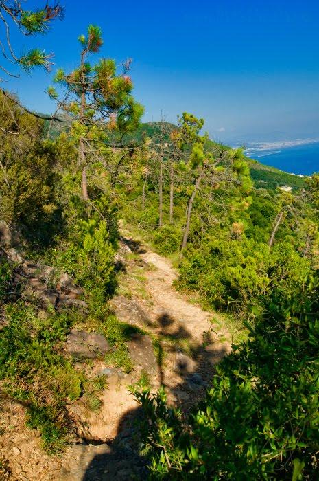 горная тропа в парке Бейгуа сосны трава море автор Демидов Игорь Mountain path in Beigua pine rocks and sea