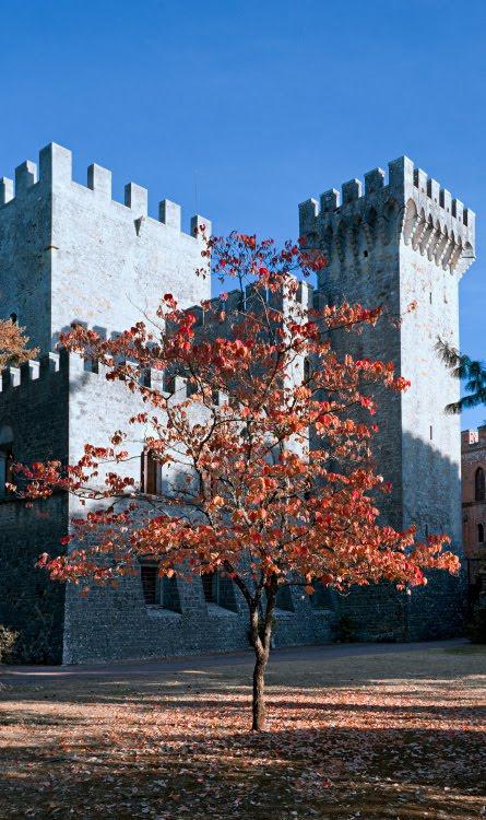 Замок Бролио Тоскана Кьянти Италия осеннее дерево стены крепости автор Демидов Игорь Castello di Brolio autumn red tree castle walls Chianti Tuscany