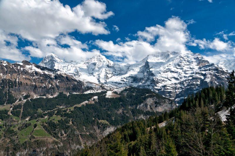 Горы Швейцарские Альпы снег деревья синее небо автор Демидов Игорь Swiss Alps blue sky green trees white snow