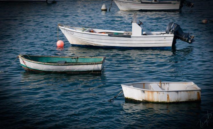 лодка рыбацкая вода корыто смешное автор Демидов Игорь water boat funny