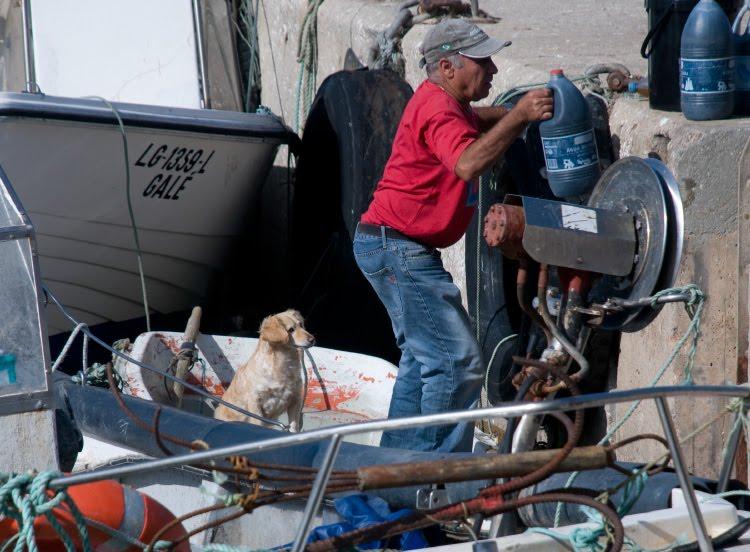 fisherman dog boat tackle рыбак на лодке с собакой автор Демидов Игорь