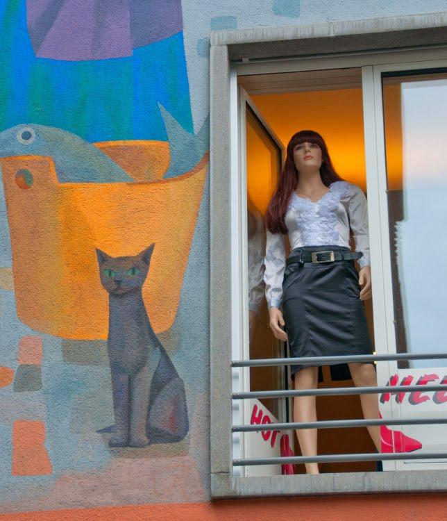 Кошка и манекен девушки в окне автор  фото Демидов Игорь mannequin and cat Luzerna window