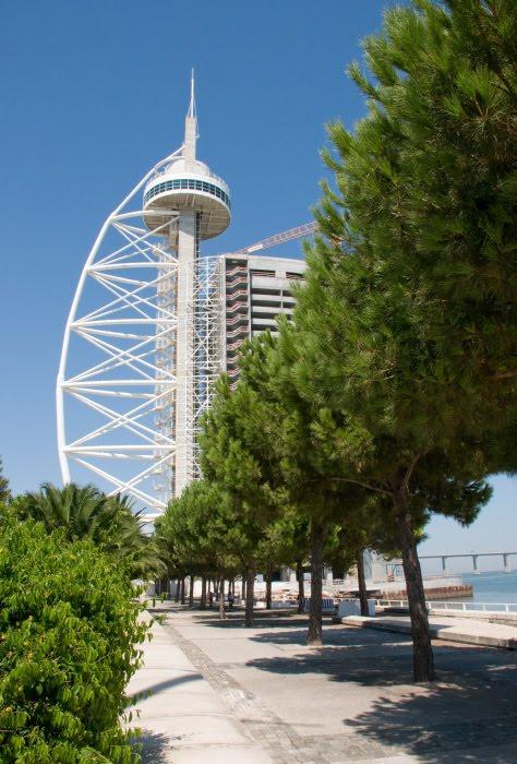 Аллея парк наций Лиссабон сосны кроны гостиница мачта корабля автор демидов Игорь Park of nations Lisbon pines alley