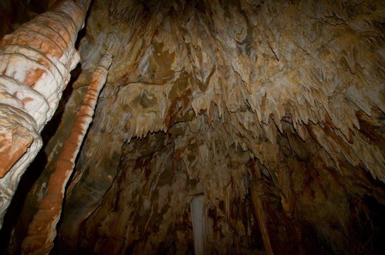 shark teeth Toirano grotto stalactite сталактит в пещере Тойрано в виде акульих зубов Автор Демидов Игорь