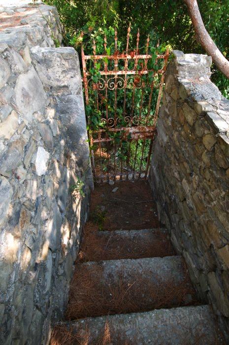 wicket gate to garden таинственная калитка в сад автор Демидов Игорь