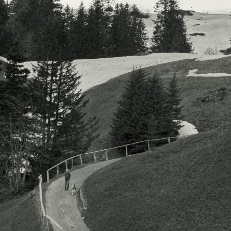 Кривая альпийская дорожка в Альпах человек и собака гуляют автор Демидов Игорь curvy Alpen road man and his dog on a walk