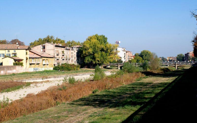 сухое русло реки в Парме трава дорога домики dry riverbad in Parma grass road houses автор Демидов Игорь